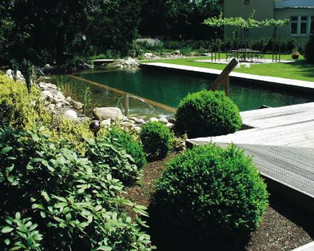 Плавательные водоемы - самый экологический водоем для купания в нашем веке