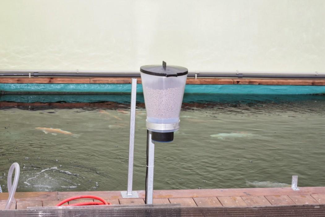 Маятниковая автокормушка для рыб